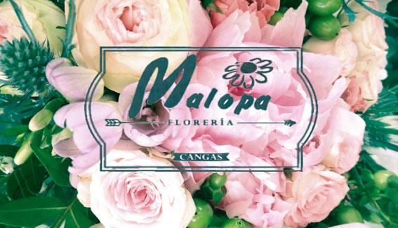 Tu floristeria en Cangas