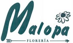 Floristeria Malopa: tu floristeria en Cangas